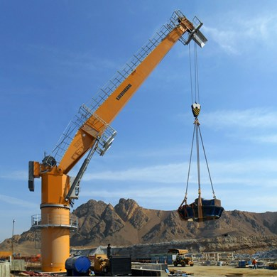 liebherr-sc-fcc-230-fixed-cargo-crane-multi-purpose-sukari-goldmine-egypt.jpg