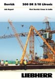 Job-Report: Firs Derrick Crane in India.
