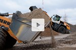 Video L 566 XPower in rehandling application