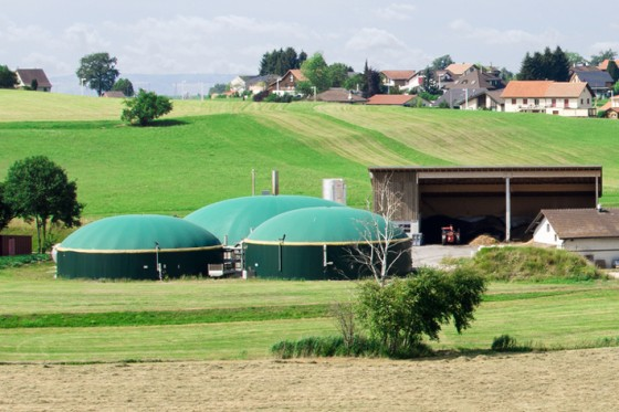Application example: biogas