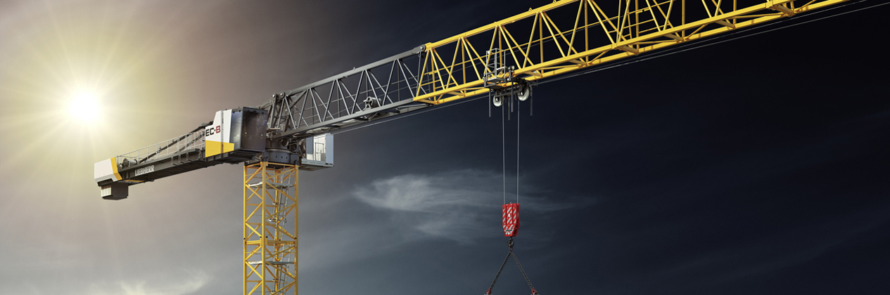 Tower Cranes and Mobile Construction Cranes - we offer