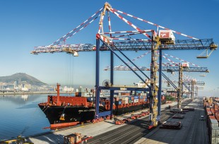 Liebherr container cranes handling goods in a port