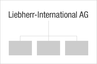 Structure operationelle du Groupe Liebherr