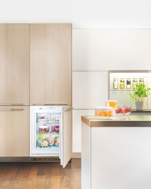 The new integrated built-in freezers IGN 1054 come with professional standard NoFrost refrigeration technology, and offer outstanding convenience for niche-size 72 cm