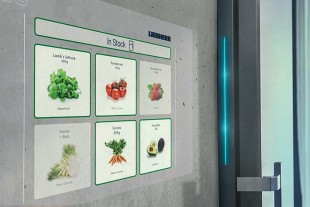 The stored food items can be recorded using cameras with object recognition and a speech module.