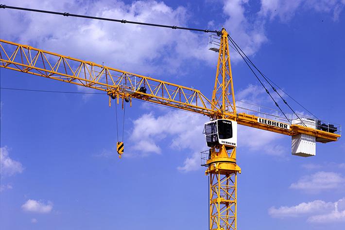 Image result for cranes
