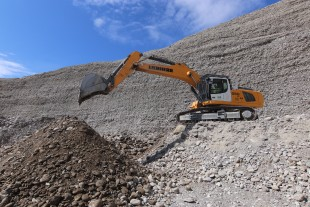 The R 950 SME is characterised by stability, economy and high breakaway torques.