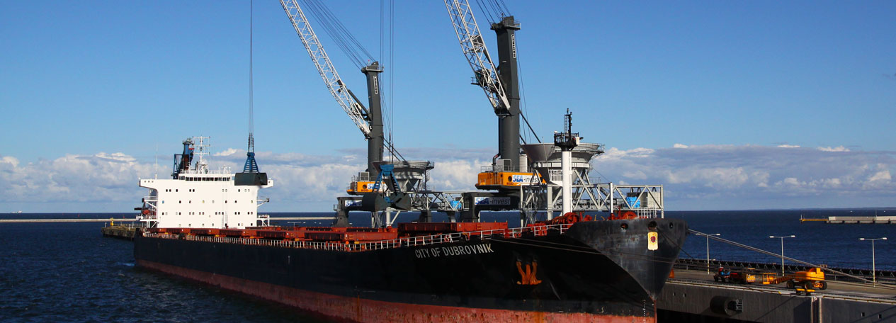 Port Equipment Liebherr